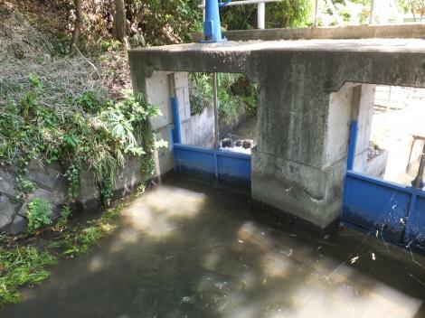相模原幹線用水路(大堀)望地隧道下流制水門・分水門