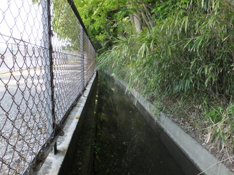 相模原幹線用水路(大堀)熊野稲荷神社前