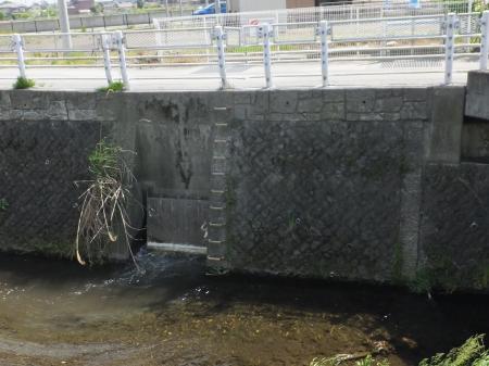 相模原幹線用水路(大堀)八瀬川へ放流中・亀行橋