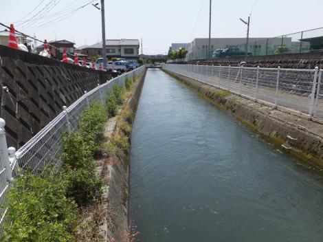 酒匂川左岸幹線用水路