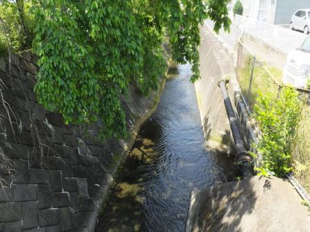松田用水と酒匂川左岸幹線用水路・川音川サイフォン放流口