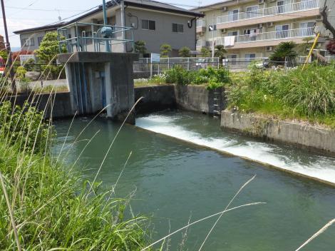 酒匂川左岸幹線用水路・金田分水堰