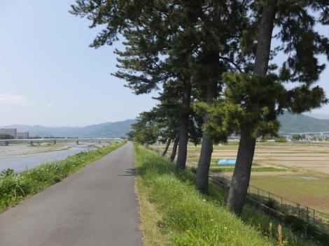 酒匂川左岸堤防より上流を望む。大井町西大井