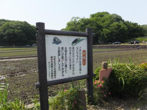 谷戸の田んぼのお願い看板・町田市三輪町