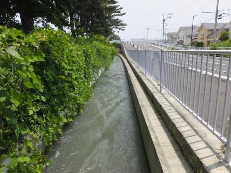 栢山頭首工用水路・足柄紫水大橋北付近