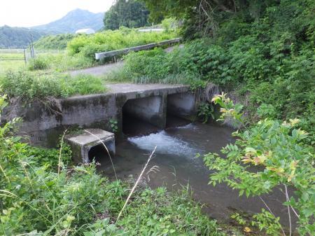 弁天橋下頭首工用水路