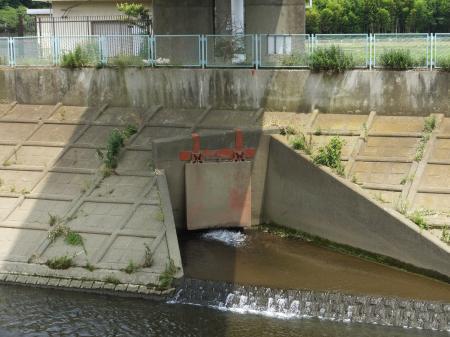 境川左岸余水吐放流口