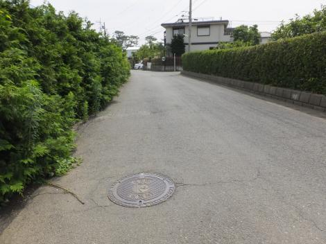 馬入川系統水道みち