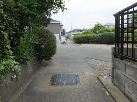 横浜水道みちと交差する野水路