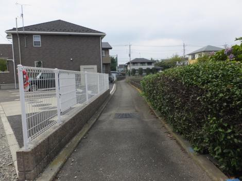 横浜水道みち付近の野水路