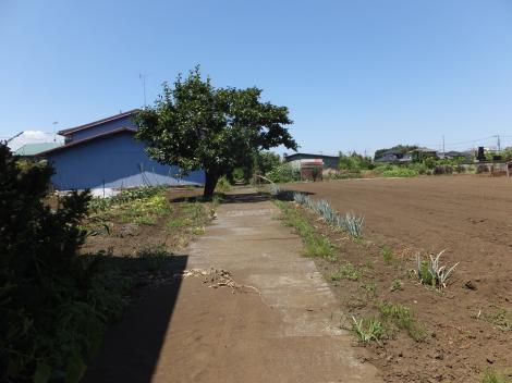 田名地区野水路