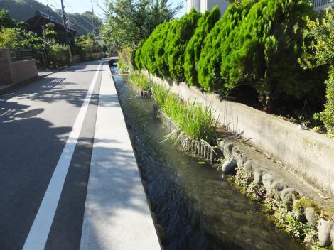 仙台下用水路・下谷