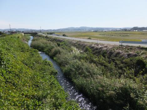 鈴川・柳橋より下流を望む