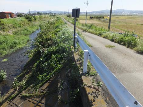 鈴川・東橋より下流を望む