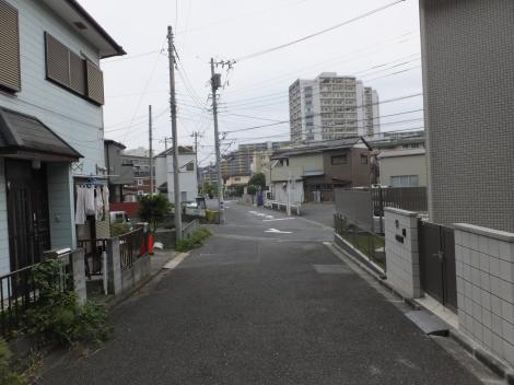 有馬系統横須賀水道みち・鎌倉市植木