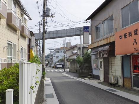 有馬系統横須賀水道みち・湘南モノレールと交差