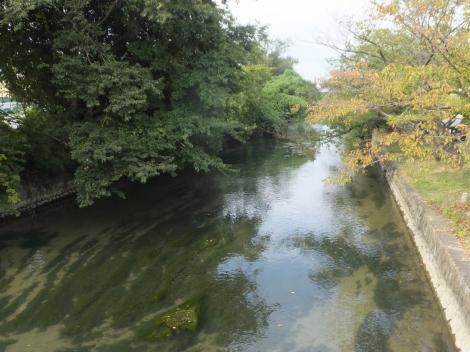 堀川の流れ・庄内用水元圦下流