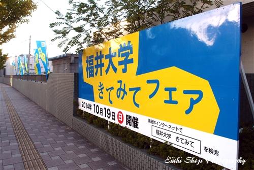 PA186996.jpg