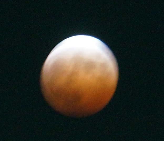 20141009 皆既月食 ピンク ムーン 21cm DSC06167