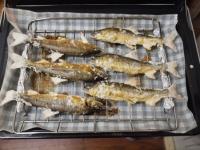 鮎の塩焼き25