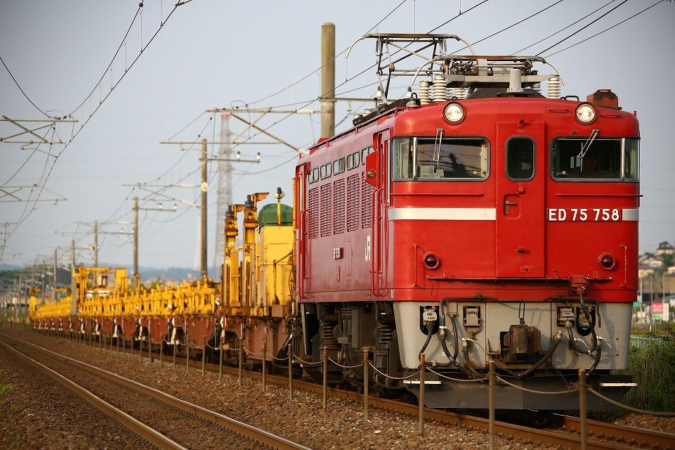 CR1A6746.jpg
