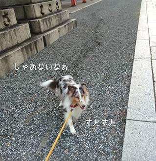 IMG_5088.jpg