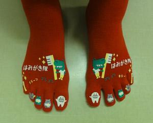 歯みがき靴下赤blog01