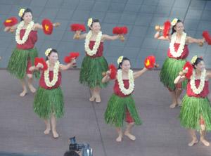 ハワイアンblog01