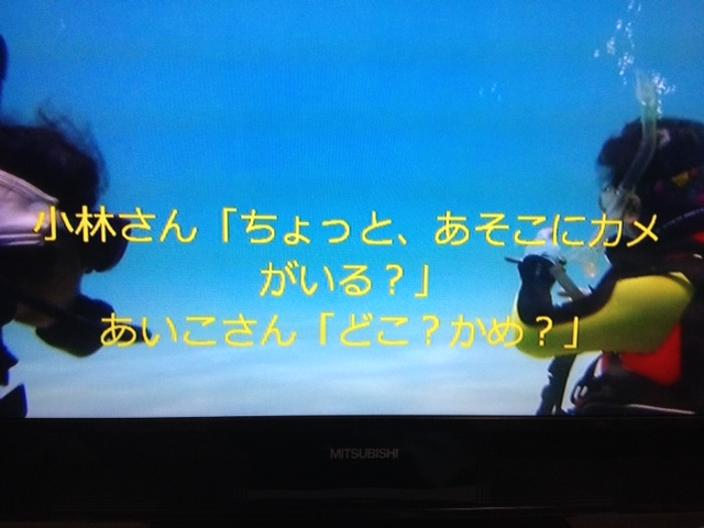 2014_05100008.jpg