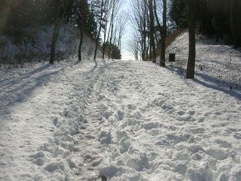 宮沢湖の道