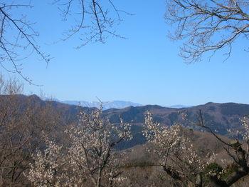 鐘撞堂山から西の山脈