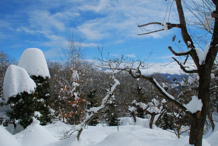 大雪が降り止んだ後の晴れ間に13