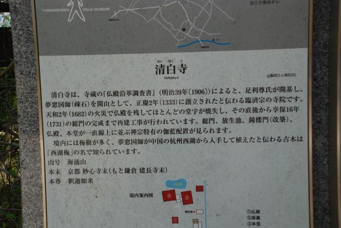 清白寺について37