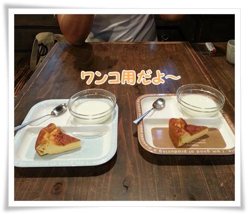 2014-05-10-15-44-25_photo.jpg