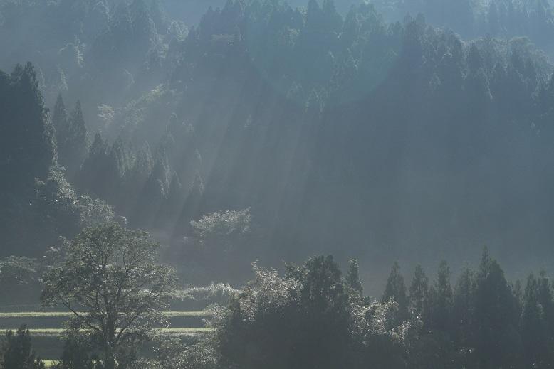 霧ヶ滝、19