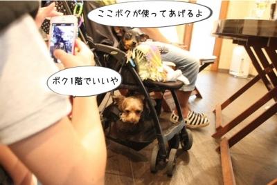 2014_07_19_9999_59.jpg