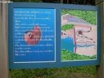 化石公園 (3)