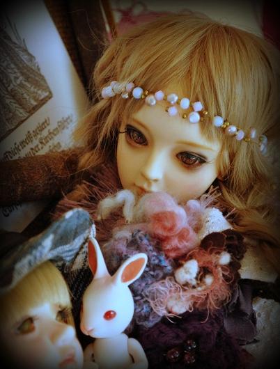 DSC_0095_20140927140404b13.jpg