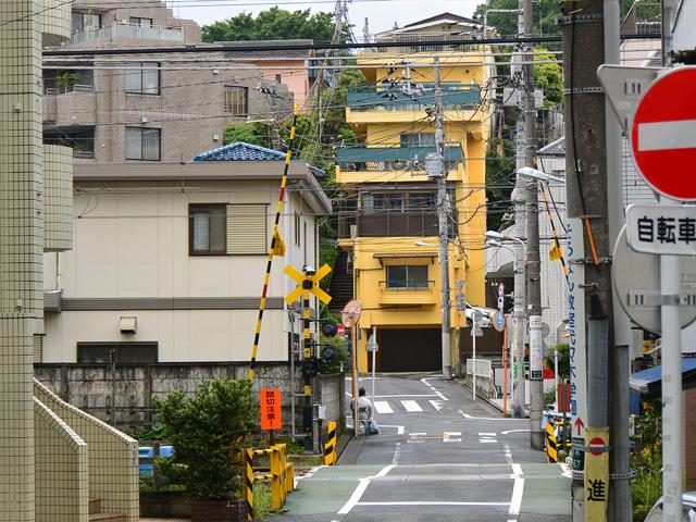 sansaku83.jpg