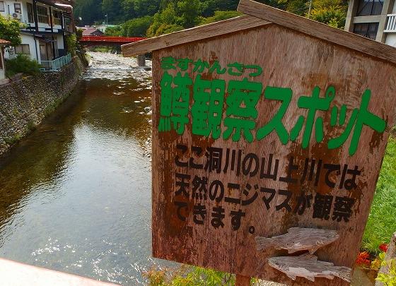 140902洞川温泉山上川