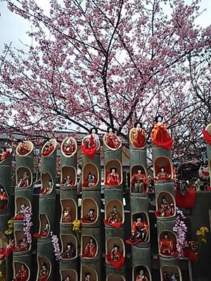 2014-02-23 勝浦ひな祭り