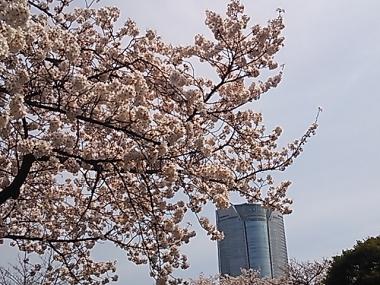 2014-04-01 121534