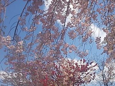 2014-04-05 143453