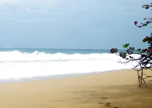 Air+Esky+Surfing+in+Bocas 201400865
