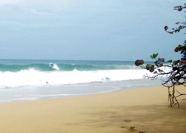 Air+Esky+Surfing+in+Bocas 201400863