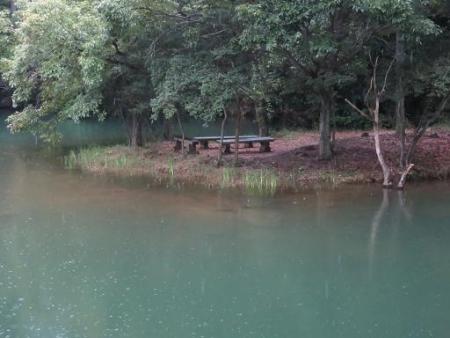赤いキノコ池 038
