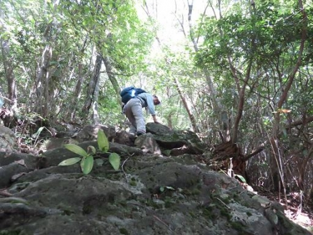 御前岳へ登る 136