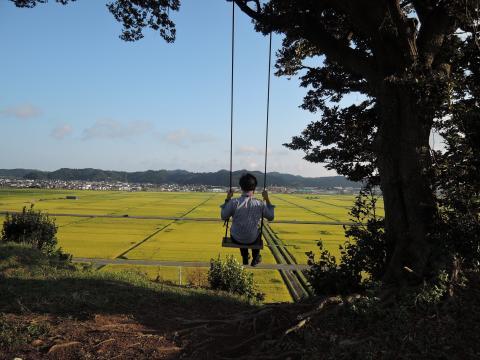 神谷米の圃場 1