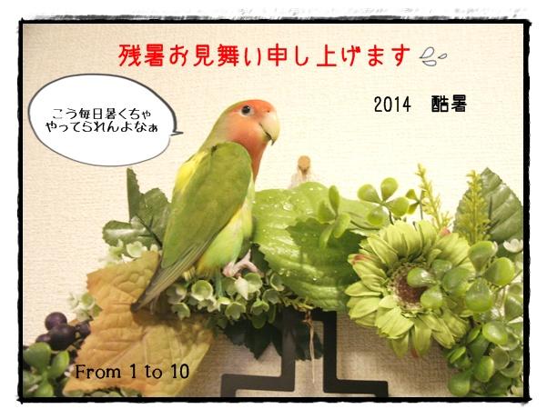 残暑お見舞い2014