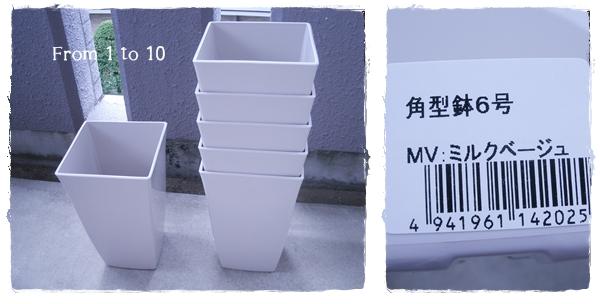 ダイソー角鉢